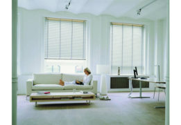 blinds-pleated-blinds-3